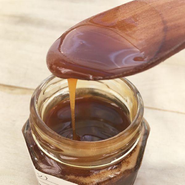 そば蜂蜜 プレーン